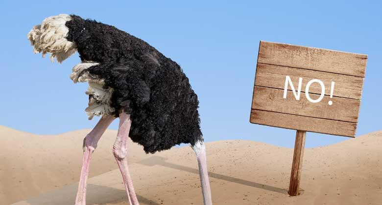 Self Assessment – Don't be an ostrich!